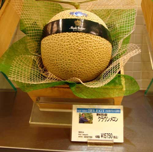 Melon à plus de 100 euros la pièce !!!