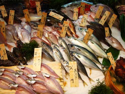 Incroyable variété de poissons dont certains parfaitement inconnus!